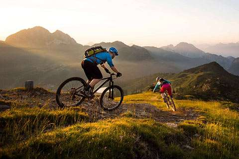 Rad / Mountainbike